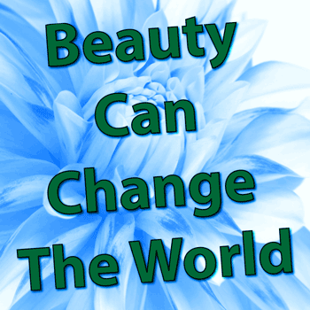 Beauty Can Change The World - Jeff Walker Michael Droste